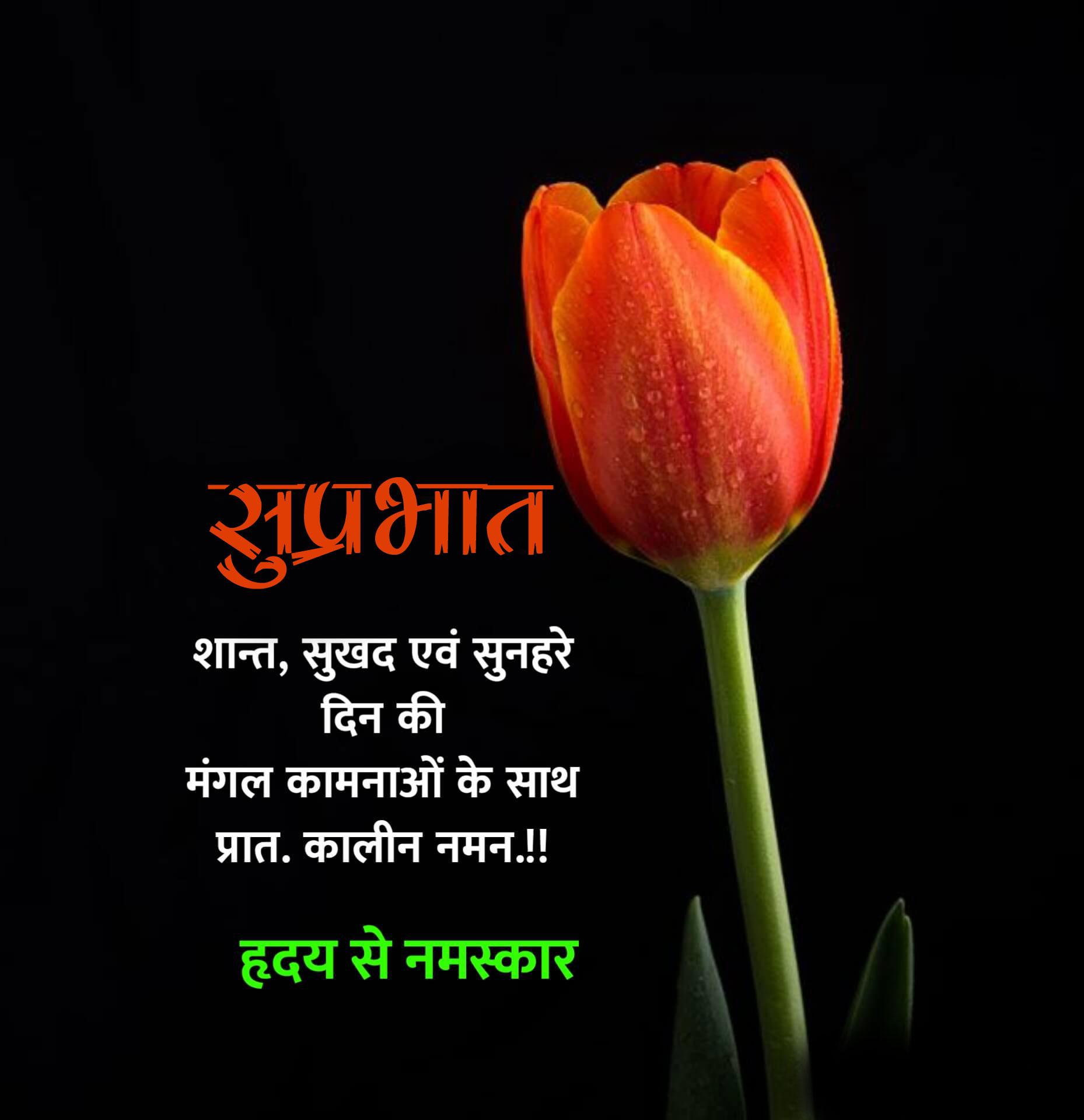 New Beautiful Suprabhat Images photo hd