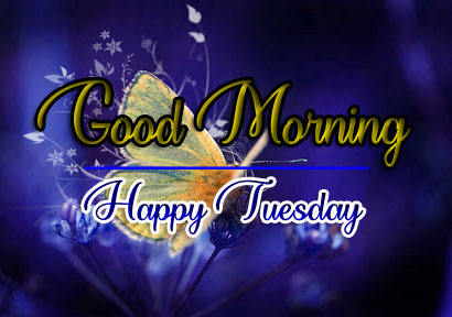 New Beautiful Tuesday Good morning Images