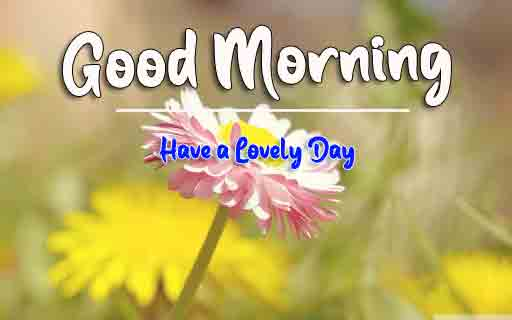New HD Good Morning All Images 2
