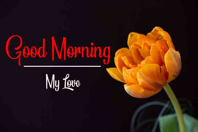 New HD Good Morning All Images for Fresh
