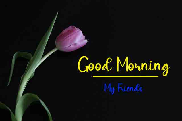 New HD Good Morning All Images