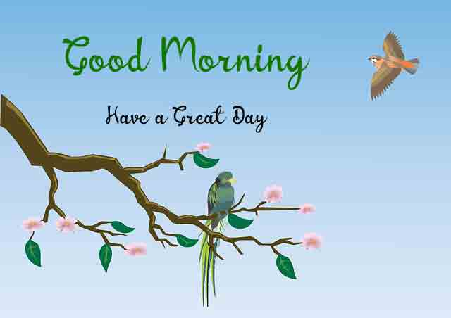 New HD Good Morning Dear Images