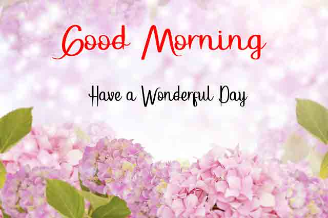 New HD Love Good Morning Images 2