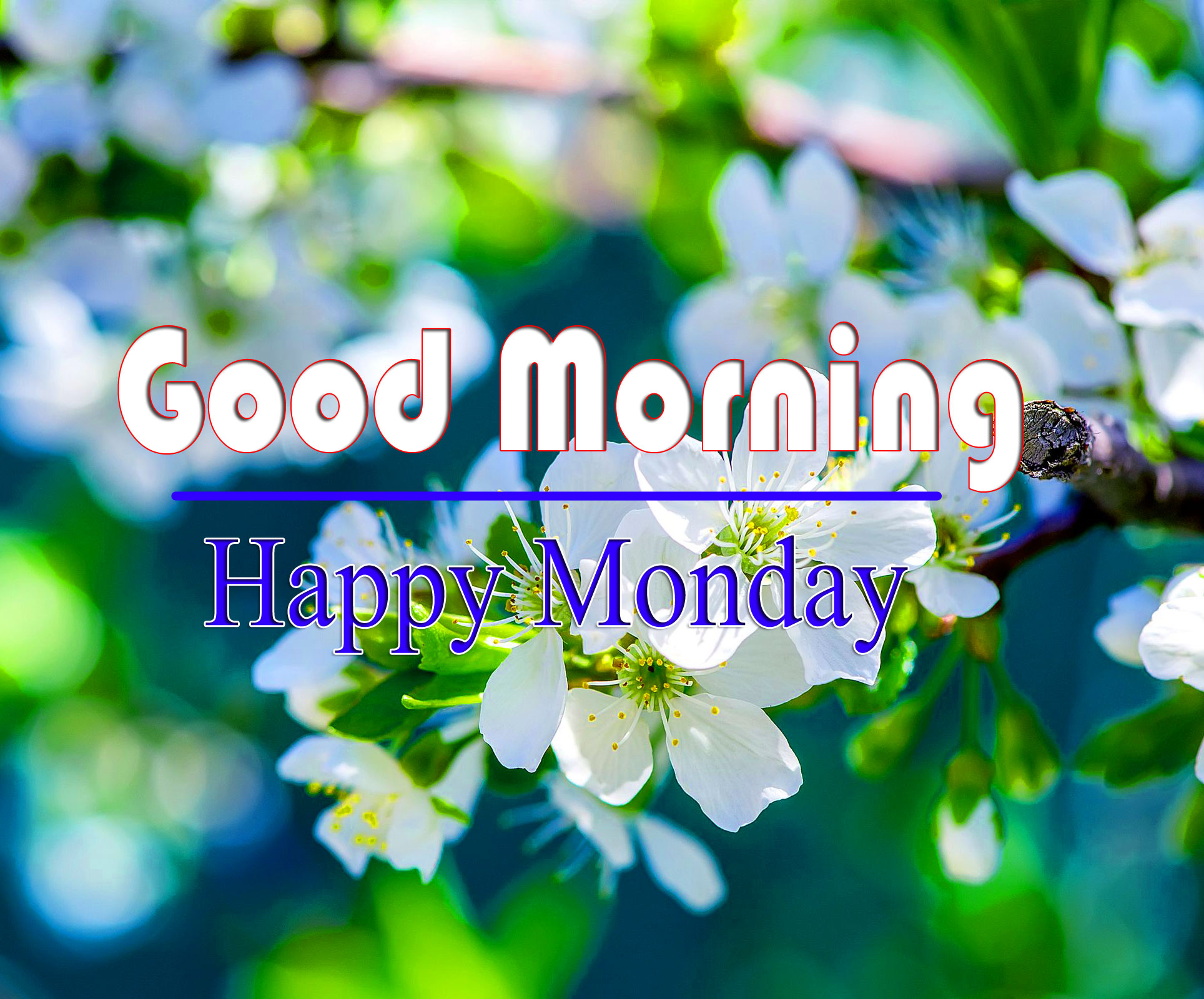 New HD Monday Good Morning Images