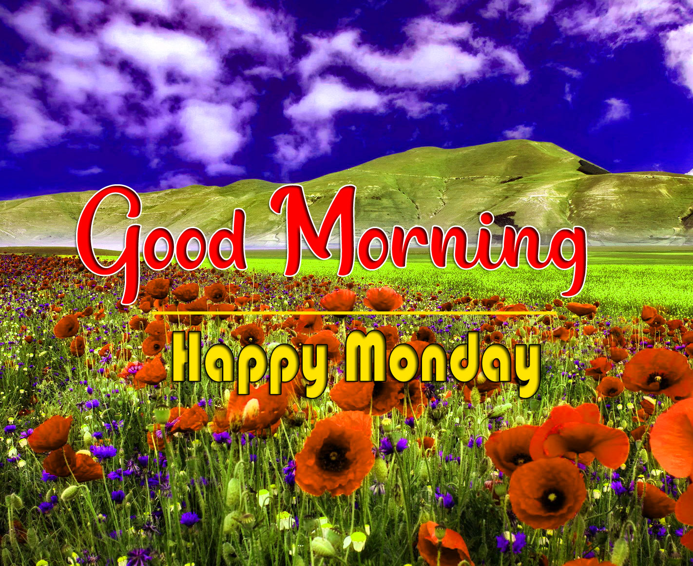 New HD Monday Good Morning Pics Wallpaper