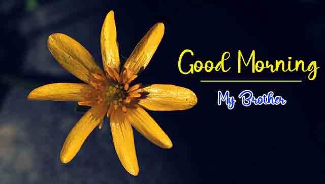 New Top HD Good Morning Dear Images