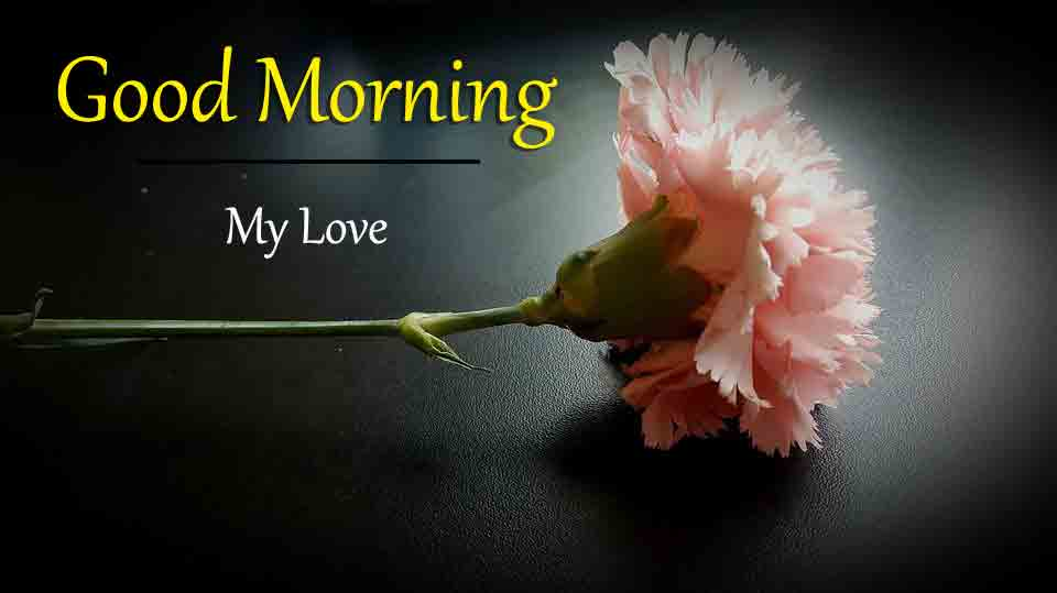 New Top HD Good Morning Images 1