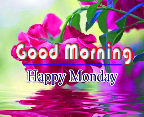New Top Quality Monday Good Morning Images