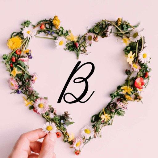 Nice B Name Dp Images photo pics free download