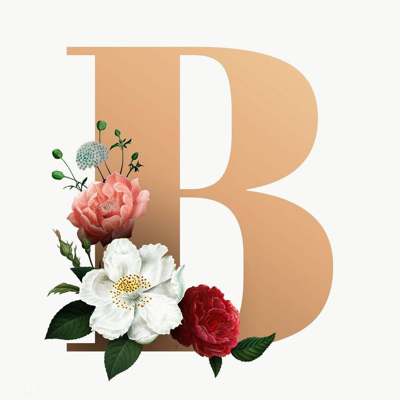 Nice B Name Dp Images photo pics hd