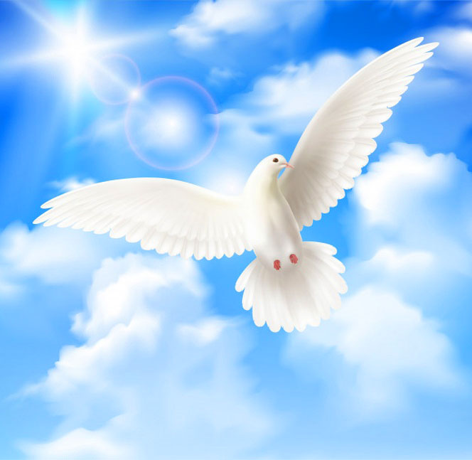Peaceful Dp Images photo download