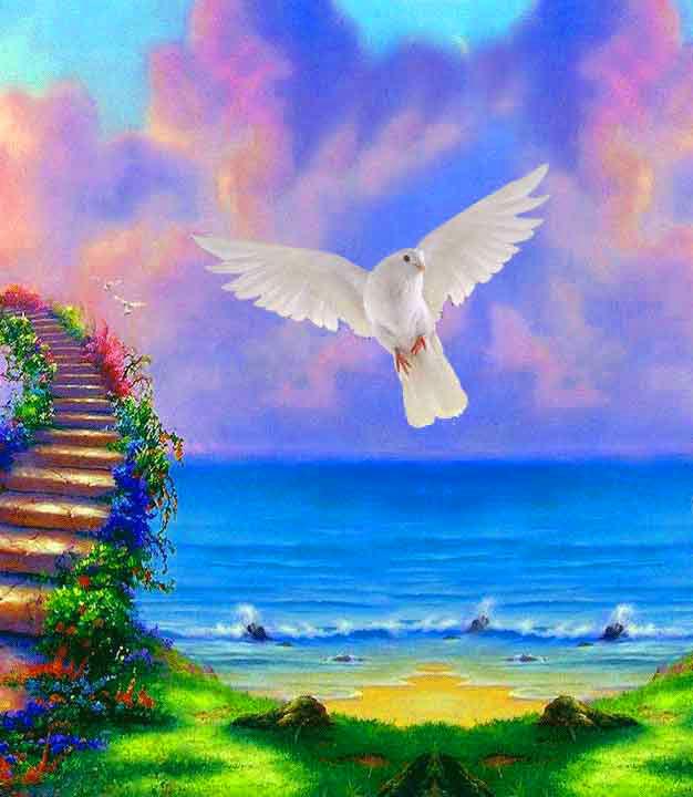 Peaceful Dp Images pics download