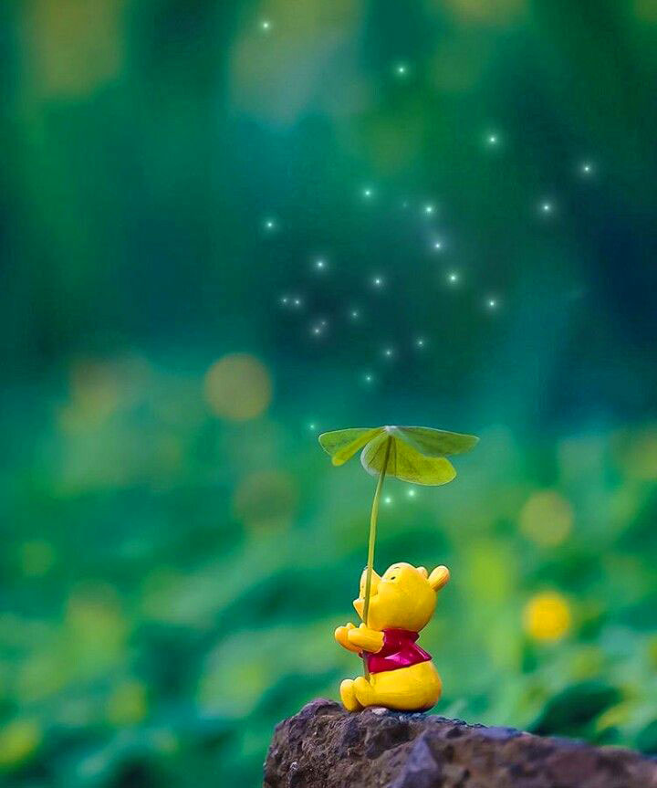Peaceful Whatsapp Dp Images pictures wallpaper download