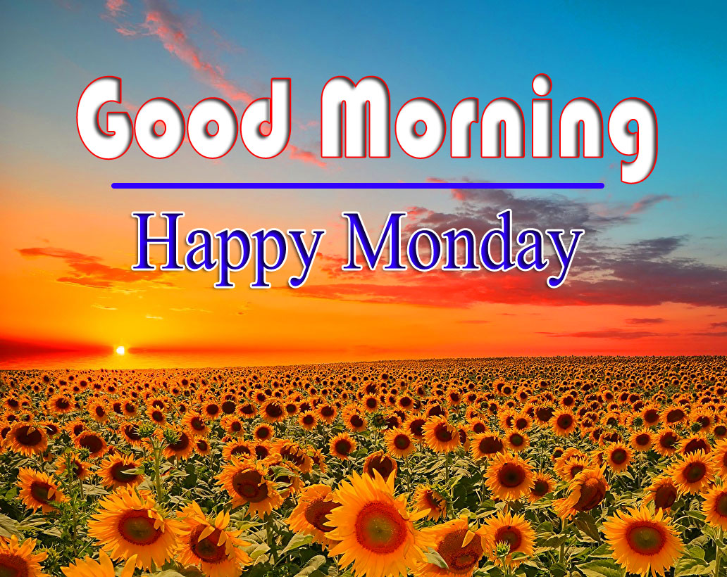 Pics HD Monday Good Morning Images