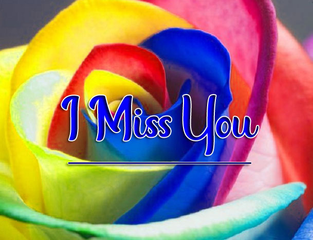 Rainbow Rose I miss you images