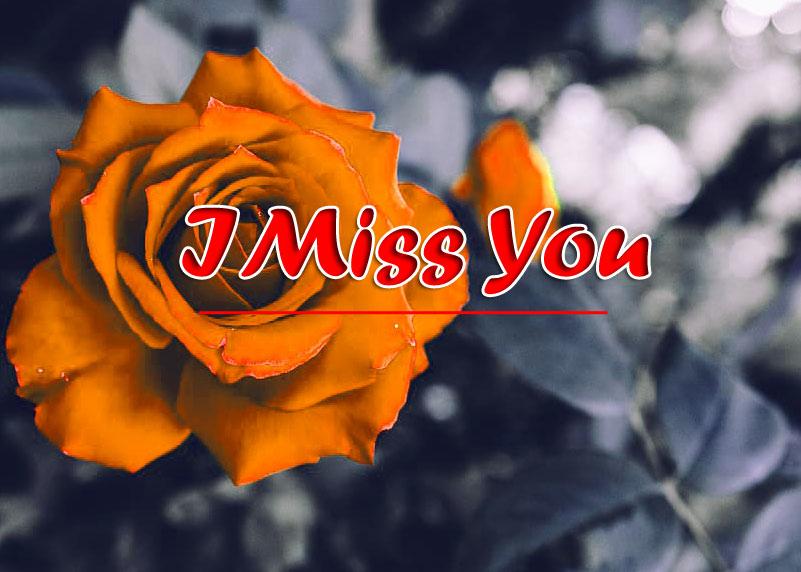 Sad l am sorry Pics Pictures