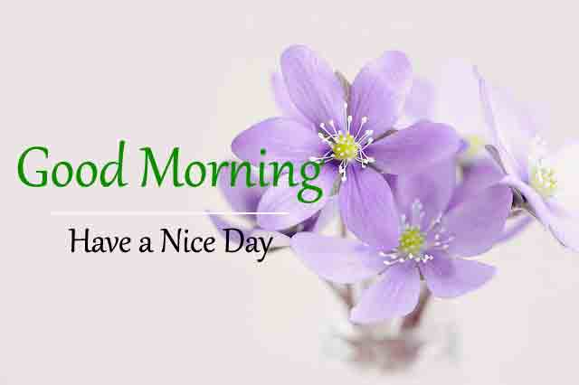 Subh Good Morning Images