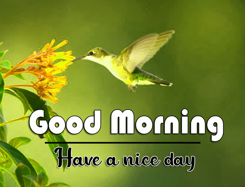 Super Good Morning Wishes Images