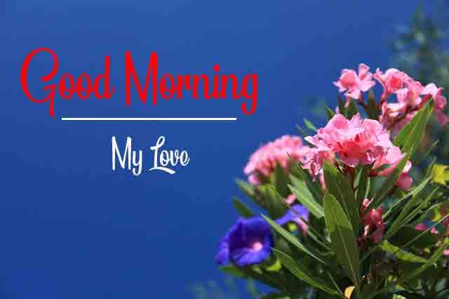 Top HD Beautiful Love Good Morning Images