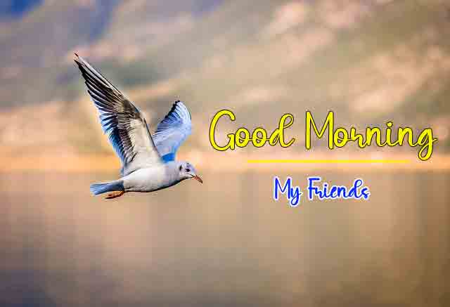 Top HD Good Morning Dear Images 2