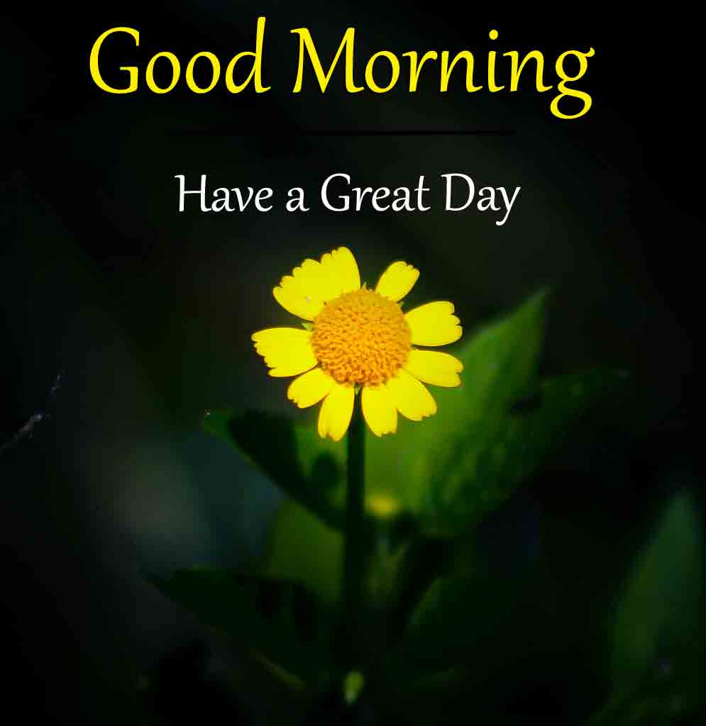 Top HD Good Morning Dear Images 2021