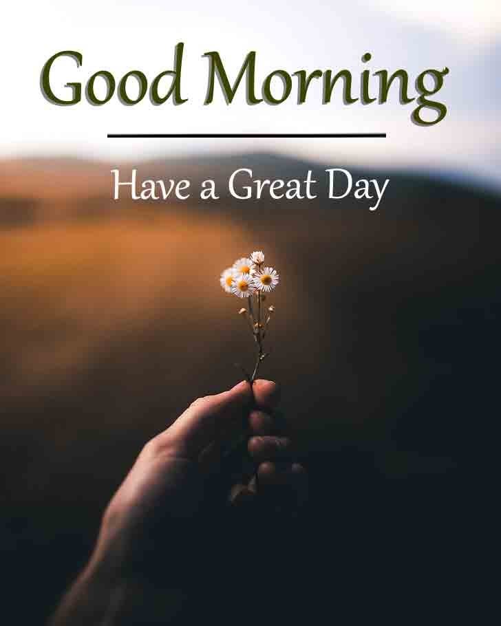 Top HD Good Morning iMAGES 1