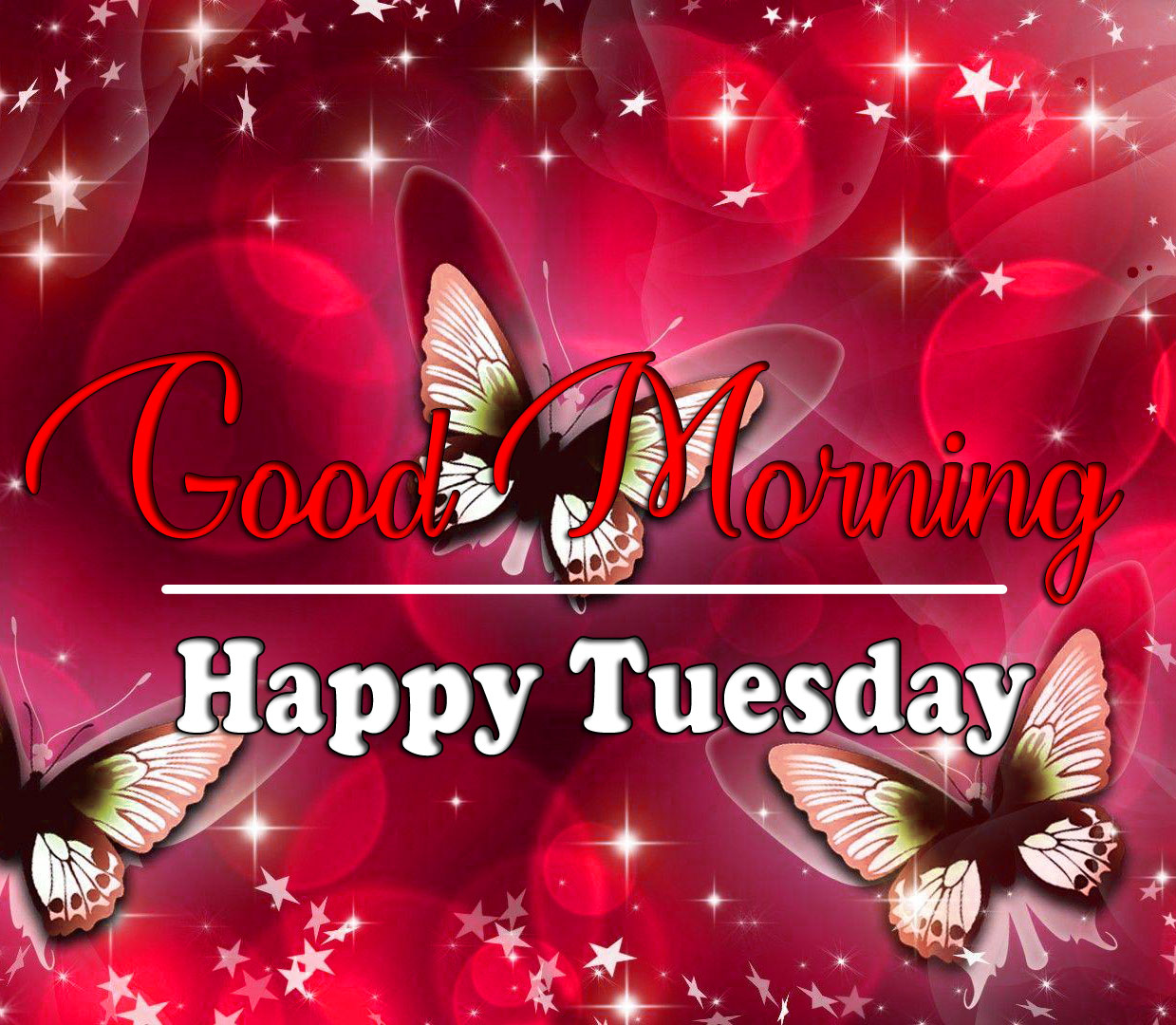 Top HD Tuesday Good morning Images 2021