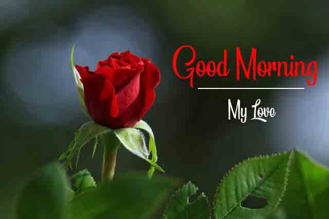 Top HD good morning Images