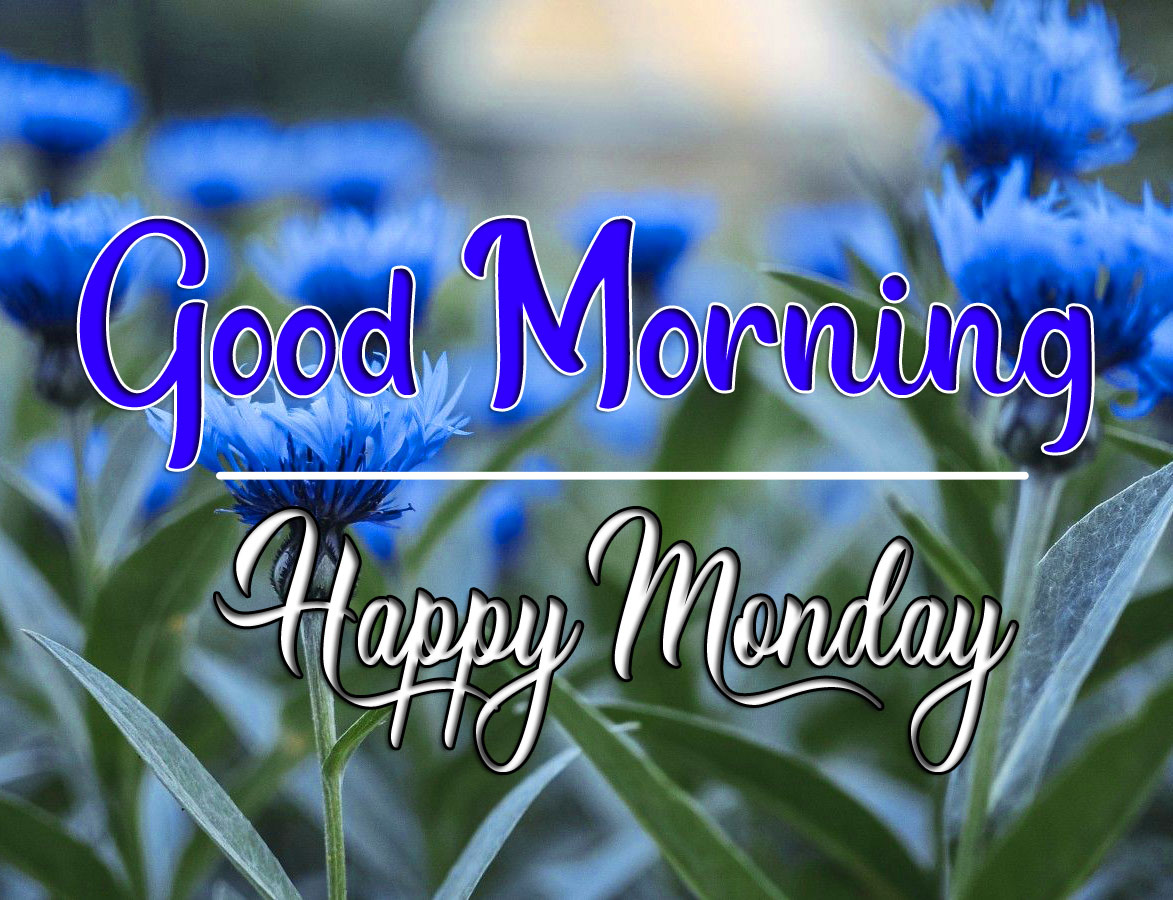 Top New HD Monday Good Morning Images