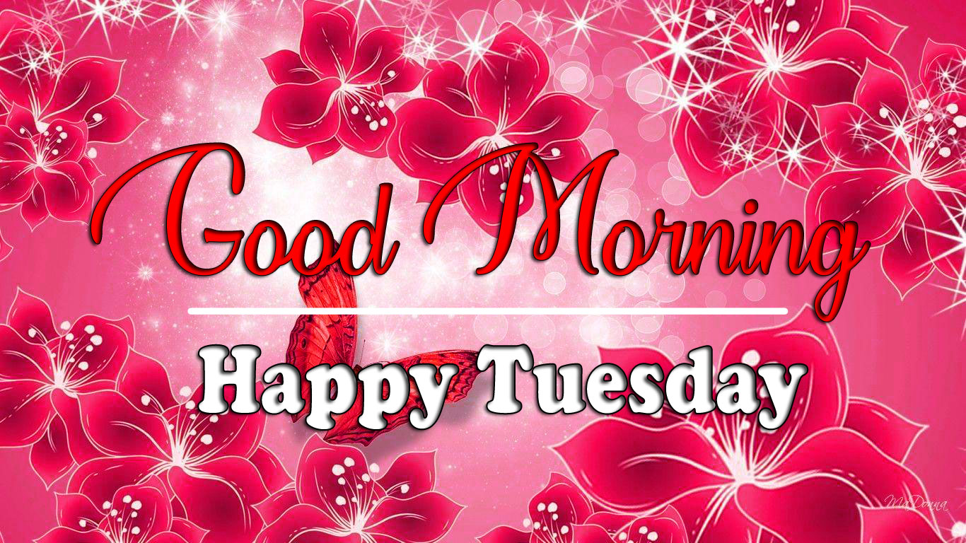 Tuesday Good morning Pics Pictures Download