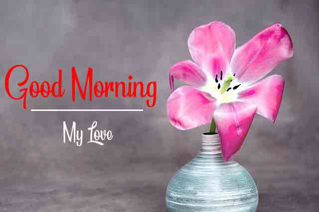 With Flower Good Morning Images