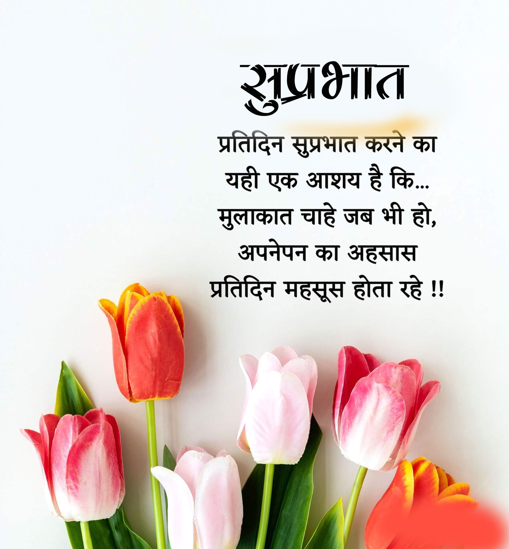 flower New Beautiful Suprabhat Images pics