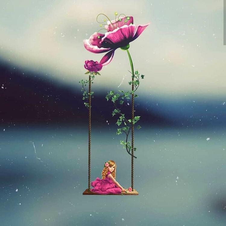 flower hd Peaceful Whatsapp Dp Images