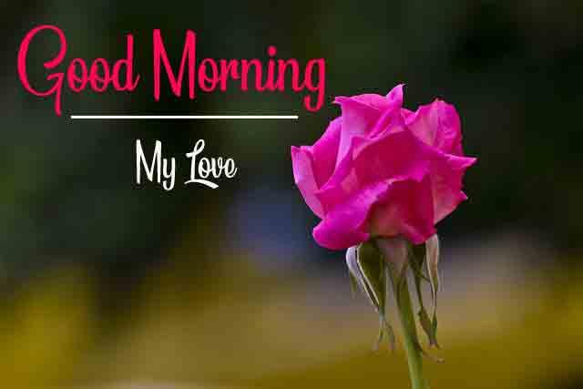 good morning Pics New