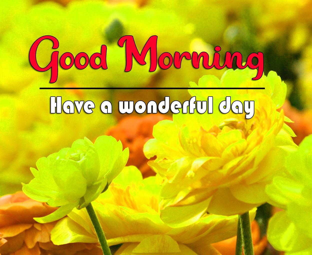 good morning Whatsapp dp Images 2021