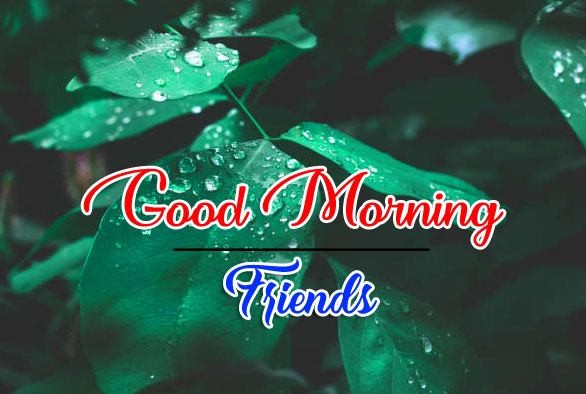 good morning Whatsapp dp Pics Free 2021