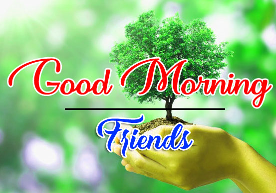 good morning Whatsapp dp Pics Free