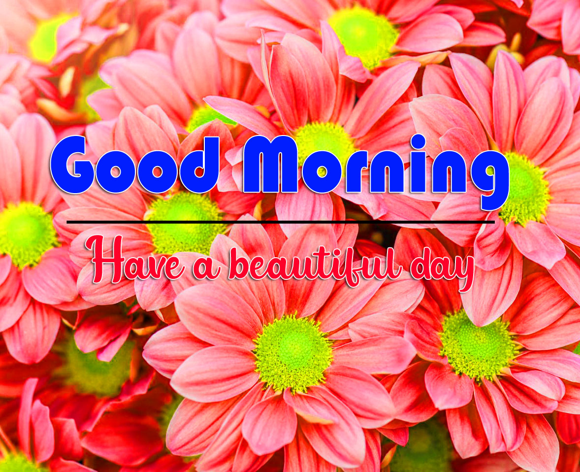 good morning Whatsapp dp Pics New