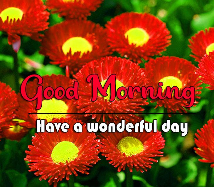 good morning Whatsapp dp Wallpaper 2021 2