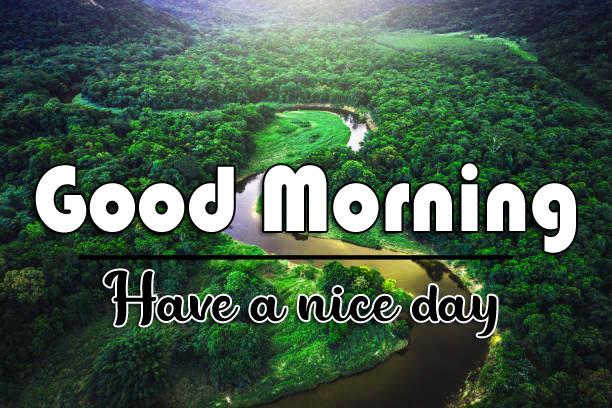 good morning Whatsapp dp Wallpaper Pics HD With Nature
