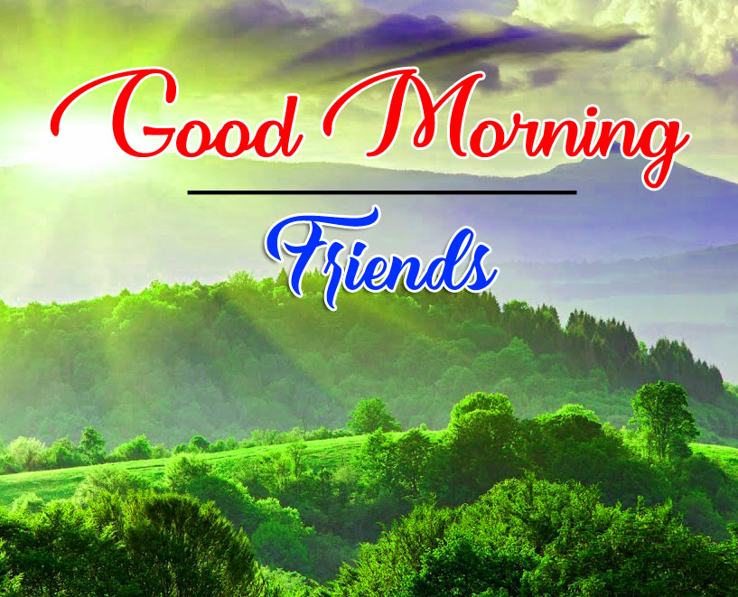 good morning Whatsapp dp Wallpaper With Nature 2