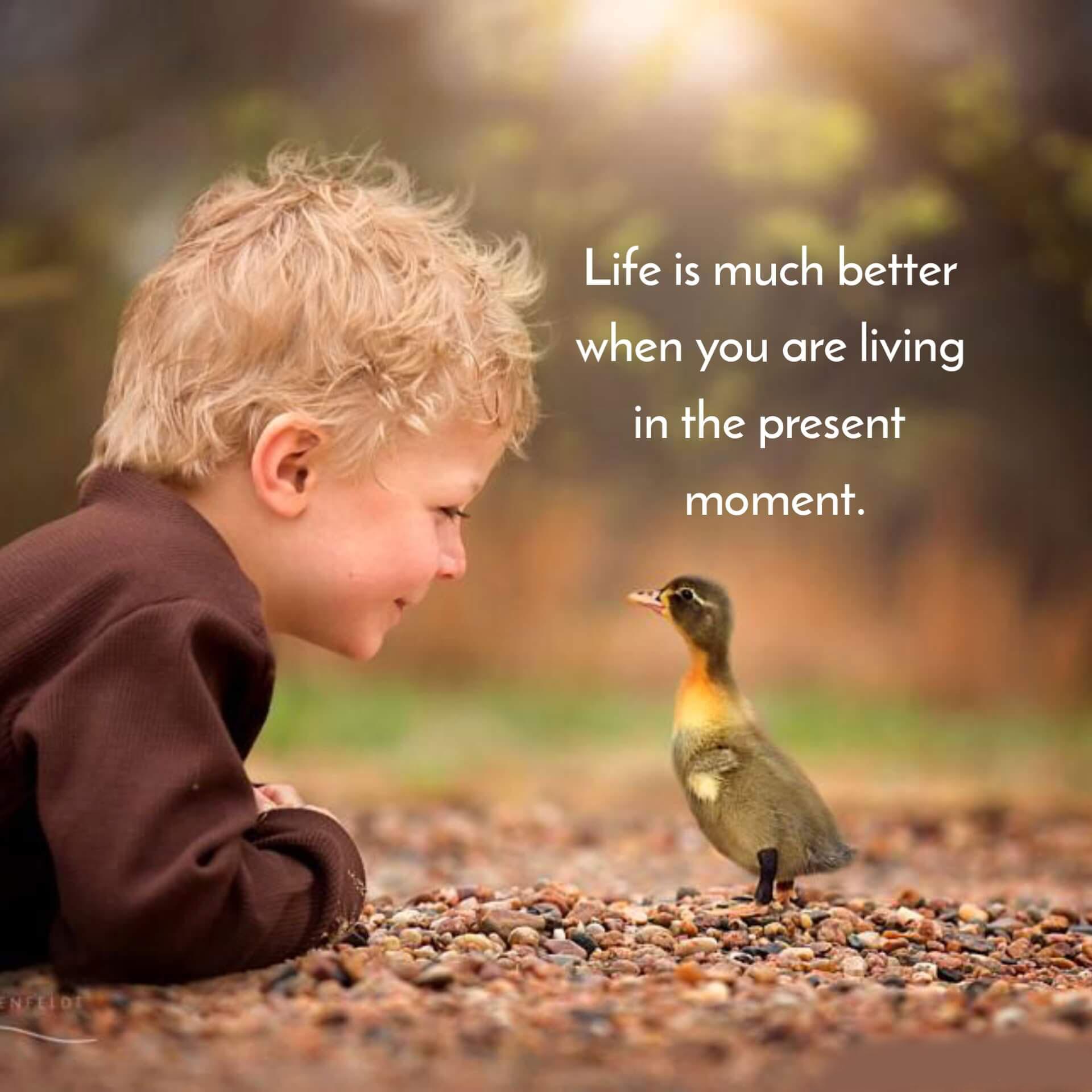 life quotes Latest Status Dp Images