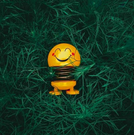 smile Status Dp Images