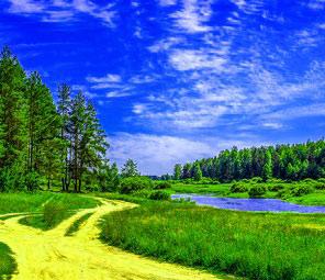 summer green countryside na