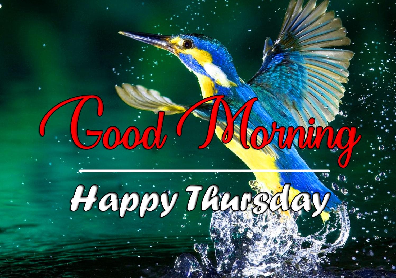 thursday morning Pics Wallpaper HD